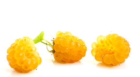 Raspberry. On a white background Royalty Free Stock Photography
