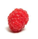 Raspberry. Stock Photography