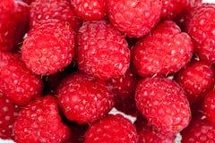 Raspberry. Small circle fresh and sweet raspberry Stock Photography