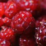 Raspberry. Royalty Free Stock Images
