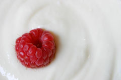 Raspberry. In vanilla yoghurt Stock Photos