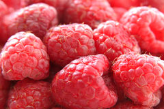 Raspberry 2. Close-up of raspberry royalty free stock photo