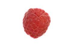 Raspberry. A single raspberry on a white background stock photos