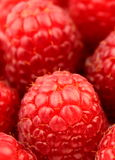 Raspberry. Fruits. Macro shot Royalty Free Stock Photography