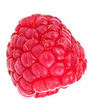 Raspberry. Isolated on white background Royalty Free Stock Image