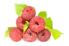 Raspberry. Fruit close up isolated on white background Royalty Free Stock Photos