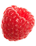 Raspberry. Isolated over white background Royalty Free Stock Photo