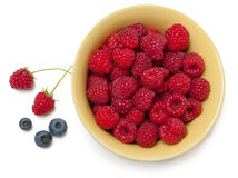 Raspberry Royalty Free Stock Photo