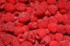 Raspberry Royalty Free Stock Photo