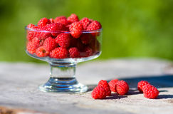 Raspberry. In a transparent cup royalty free stock photo