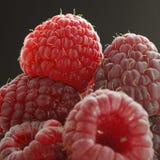Raspberry. Fresh raspberries Royalty Free Stock Photos