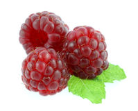 Raspberry And Leaves Stock Photos