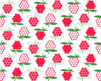 Raspberry background Royalty Free Stock Photography