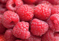 Raspberry background. Fresh raspberry background, macro shot Stock Images