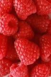 Raspberry Background Royalty Free Stock Photo