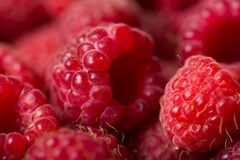 Raspberry background Stock Photos