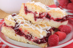 Raspberry Bars Closeup Stock Images