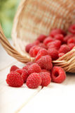 Raspberry in a basket on the table Royalty Free Stock Image