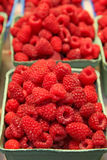 Raspberry baskets at a market Stock Images