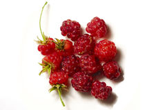 Raspberry. Beautiful sweety raspberry. Garden. food Royalty Free Stock Photos