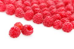 Raspberry berries isolated on white. Natural raspberry berries isolated on white background. copy space Royalty Free Stock Images