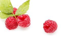 Raspberry berries isolated on white. Natural raspberry berries with mint leaf isolated on white background. copy space Stock Photo