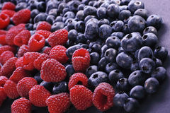 Raspberry and bilberries on the white background. Natural fresh raspberry and blueberries on the white background Stock Photo