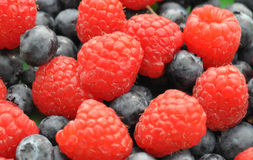Raspberry with bilberry Stock Photo