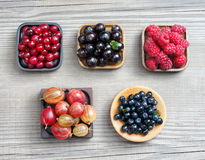 Raspberry, Bilberry, Gooseberry, Cranberry and Currant. Harvest Concept. Top view, high resolution product Royalty Free Stock Photos