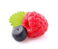 Raspberry with bilberry Royalty Free Stock Image