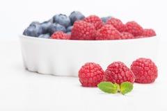 Raspberry bilberry in white bowls. Raspberry and bilberry in white bowls Royalty Free Stock Photos