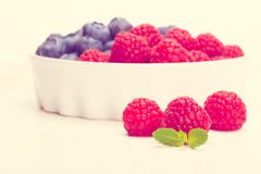 Raspberry bilberry in white bowls. Toned in warm colors. Raspberry bilberry in white bowls Stock Photography