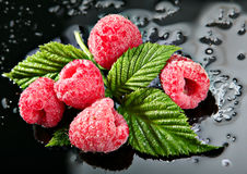 Raspberry on black Royalty Free Stock Photography