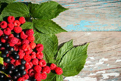 Raspberry and black currant on leaves on the wooden Royalty Free Stock Photos