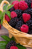 Raspberry and blackberry. In the basket Stock Photo
