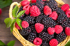 Raspberry and blackberry. In the basket Stock Images