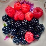 Raspberry and blackberry berries royalty free stock image