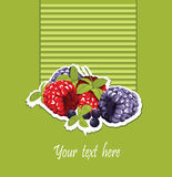 Raspberry and blackberry card Stock Photography