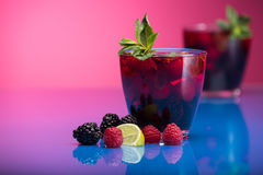 Raspberry and blackberry cocktail with mint garnish. Royalty Free Stock Photos