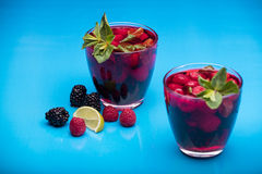 Raspberry and blackberry cocktail with mint garnish. Royalty Free Stock Photo
