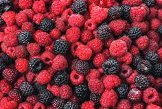 Raspberry and blackberry. Fresh Raspberry and blackberry as background close up Royalty Free Stock Photo