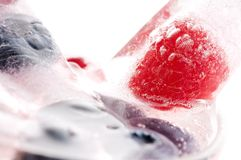 Raspberry and blackberry frozen in ice sticks Stock Photography