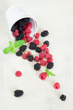 Raspberry and blackberry Royalty Free Stock Images