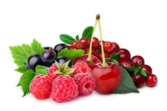 Raspberry, blackcurrant,cherry,lingonberry,cranberry Royalty Free Stock Photography