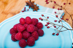 Raspberry on blue plate Royalty Free Stock Photo