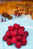 Raspberry on blue plate Royalty Free Stock Photography