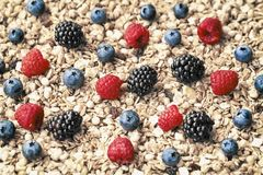 Raspberry, blueberries, blackberries on background of muesli, Oat flakes, granola. Healthy breakfast, right lifestyle. Raspberry, blueberries, blackberries on Royalty Free Stock Photos