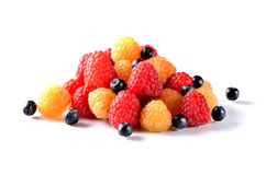 Raspberry and blueberries isolated on white. Red and yellow raspberries and blueberries close-up, summer photo Royalty Free Stock Photos