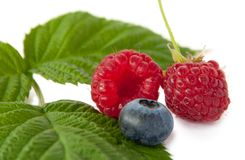 Raspberry and blueberry Royalty Free Stock Images
