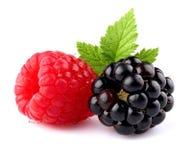 Raspberry with blueberry Royalty Free Stock Photos